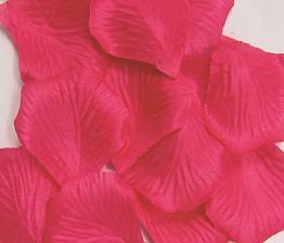 紙吹雪にもなるバラの花びら手品